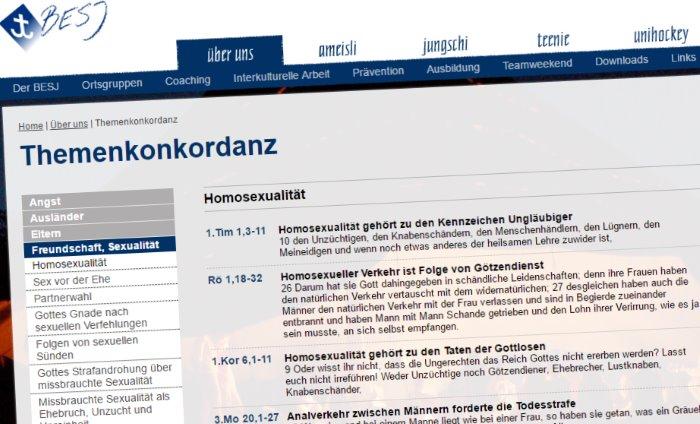 Capture d'écran de la page consacrée à l'homosexualité sur le site de la BESJ, 28 juin 2017.